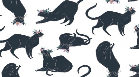 Rae Ritchie Magik, Cat Magik in White, Fabric Half-Yards STELLA-SRR878