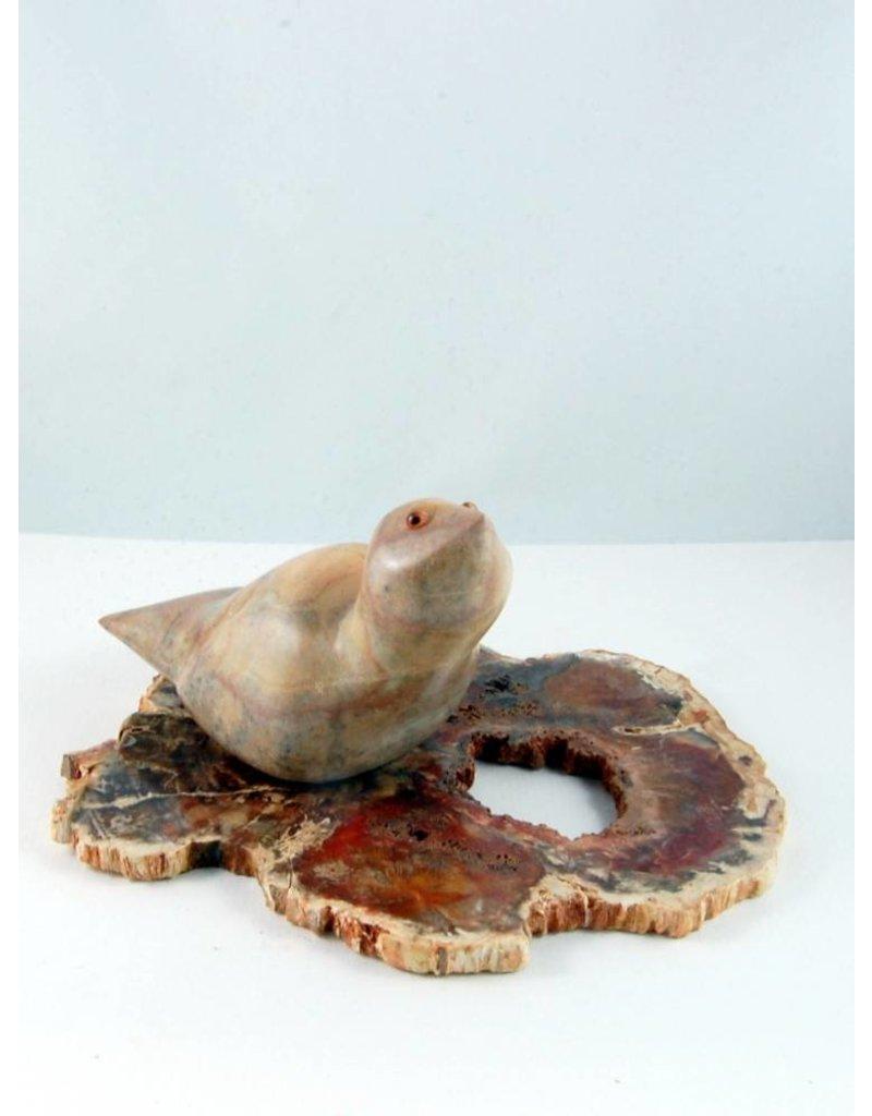 Lucie Nadeau Oiseau sur bois pétrifié