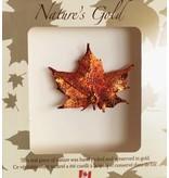 Nature's Gold Maple Leaf Broche - Feuille d'érable plaquée en Or Irisdescent