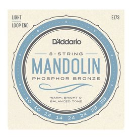 D'Addario Light Mandolin