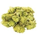 Chinook Whole Hops (2 oz)