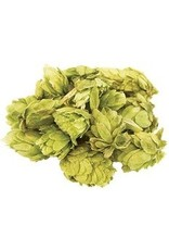 Chinook Whole Hops (2 oz)