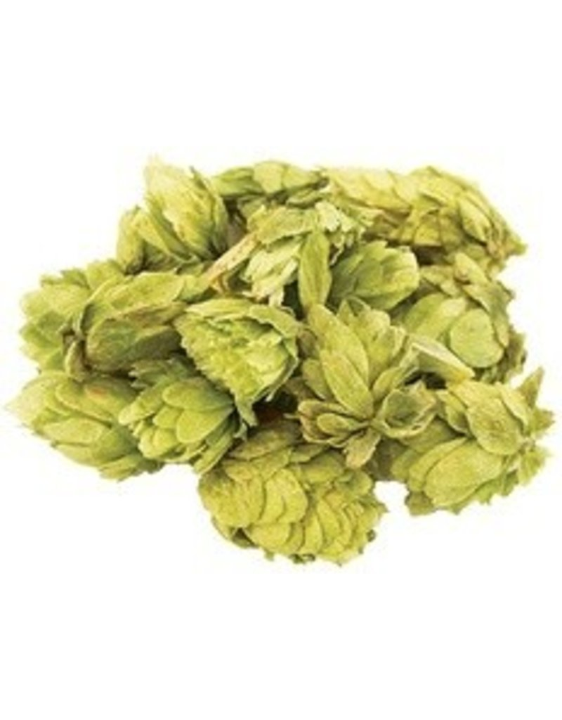 Citra Whole Hops (2 oz)