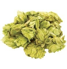 Czech Saaz Whole Hops (2 oz)