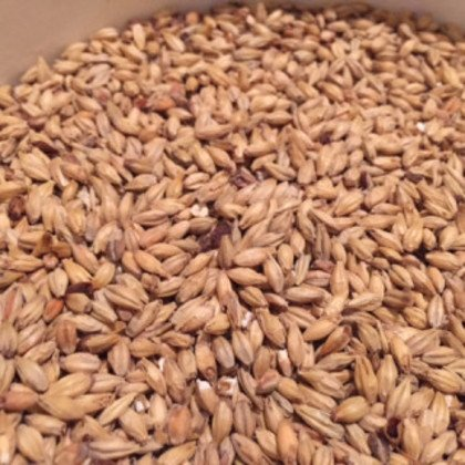 OConnors Home Brew Supply Cherry Wheat