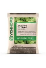YCH Hops Citra Hop Pellets 1 OZ (US)