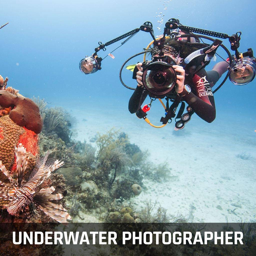 Digital Underwater Photographer Course