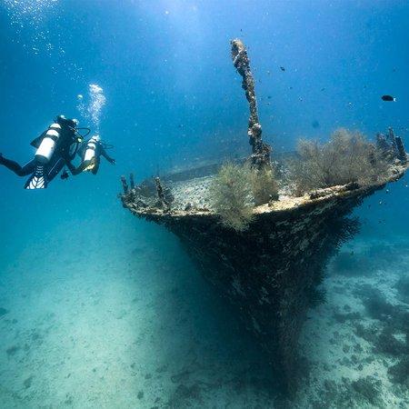 Total Diving est la meilleure équipe pour apprendre la plongée