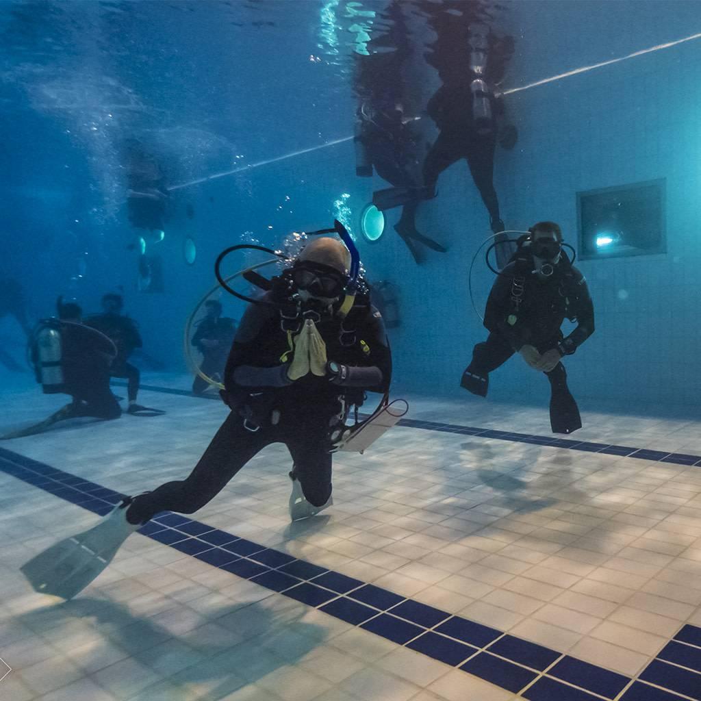 Plongée et freediving libre en piscine