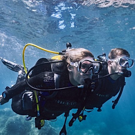 5 reasons why you should continue your dive training after PADI Open Water