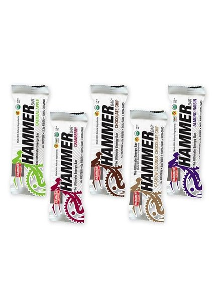 Hammer Nutrition Hammer Bar - (single)