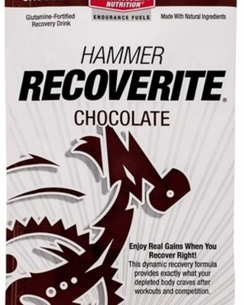 Hammer Nutrition Hammer Recoverite Single Serving