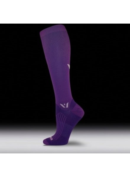 Sock Guy ASPIRE TWELVE SWIFTWICK SOCK