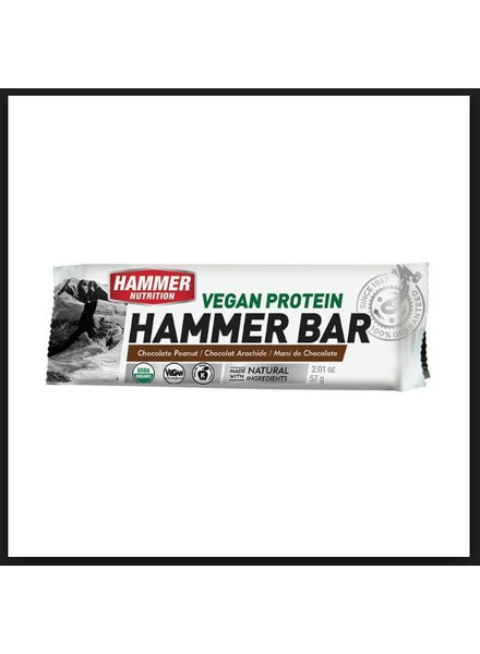 Hammer Nutrition HAMMER VEGAN PROTEIN BAR -  (single)