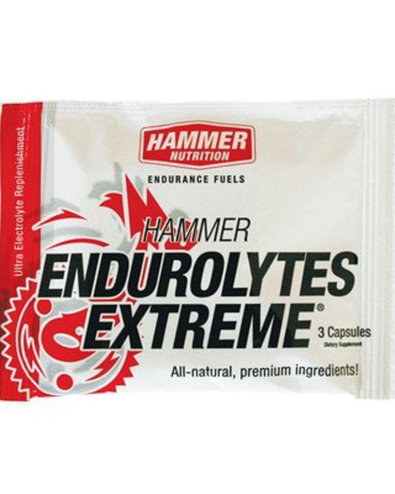 Hammer Nutrition HAMMER  ENDUROLYTES 3 Capsules Pack