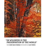 In Wildness Is the Preservation of the World Porter