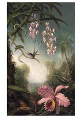 Hummingbirds: Martin Johnson Heade Notecard Folio Boxed Notecard