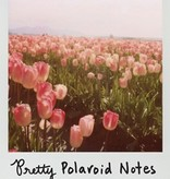 Pretty Polaroid Notes 20 Different Notecards and Envelopes