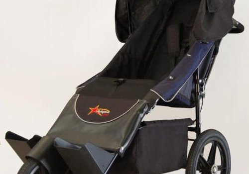 Adaptive Star Adaptive Star Axiom Endeavour 1.5 Indoor and Outdoor Mobility Push Chair In Navy