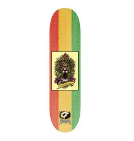 CONSOLIDATED CONSOLIDATED - LION DECK 8.25""