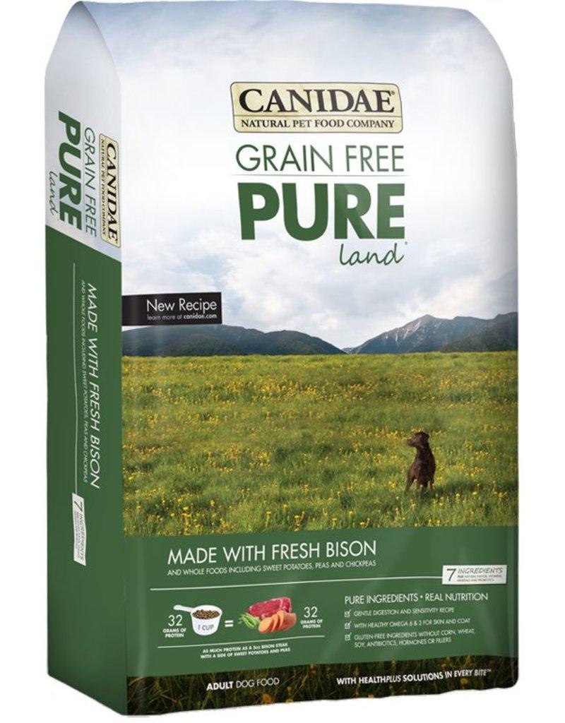 Canidae Pure Land Dog