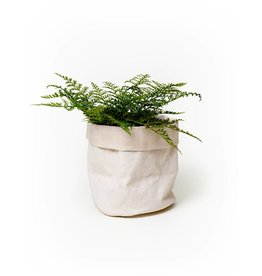 Uashmama Pale Khaki Paper Bag Planter