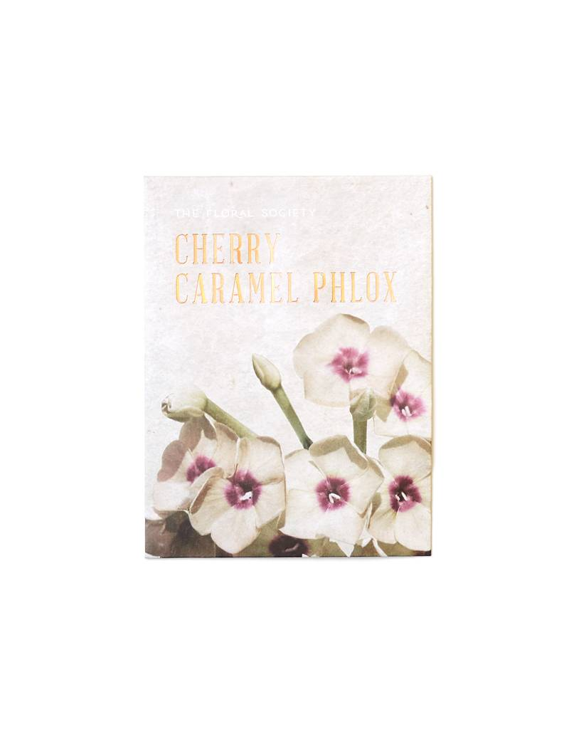 Cherry Caramel Phlox Seeds