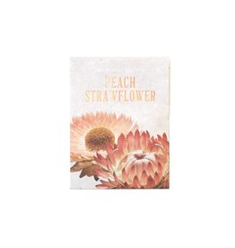 The Floral Society Apricot Peach Straw Flower Seeds