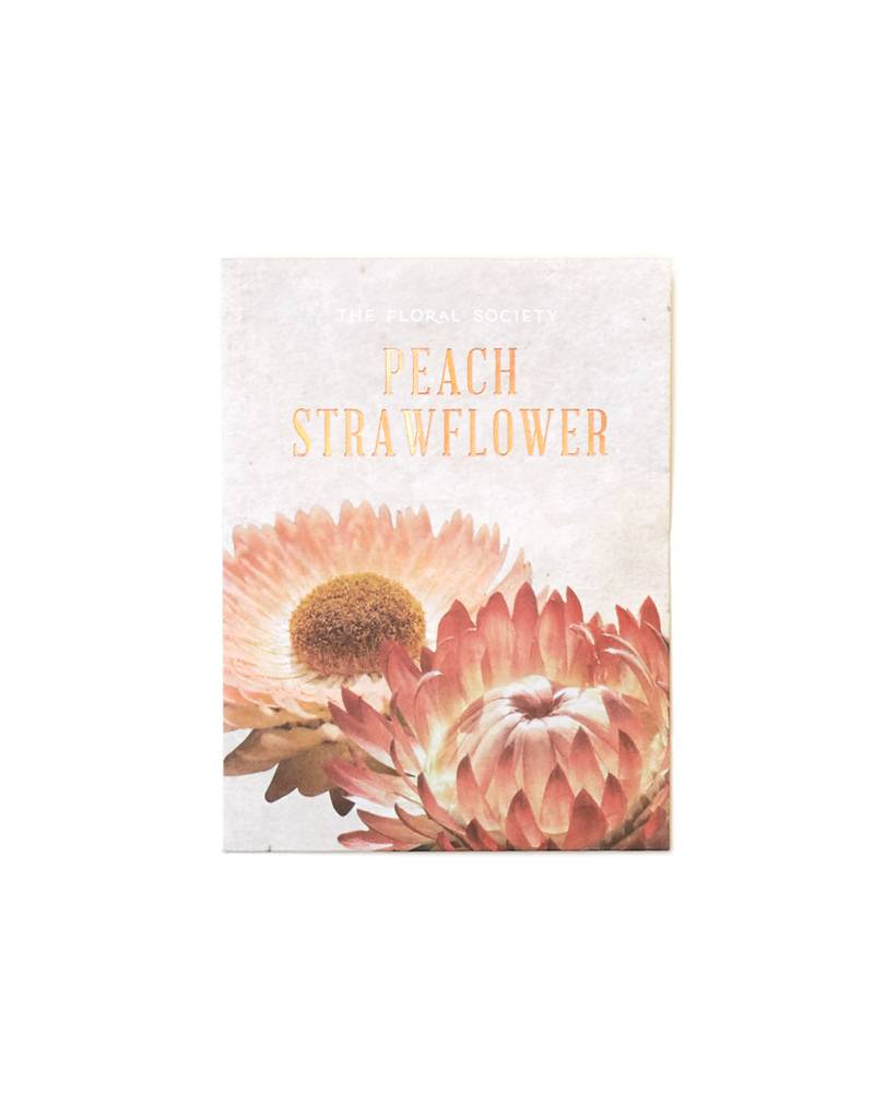 Apricot Peach Straw Flower Seeds