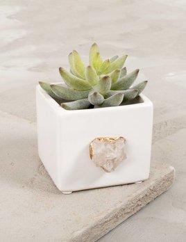 Dani Barbe Quartz Succulent Planter in White