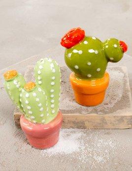Creative Co Op Cacti Salt & Pepper Shakers