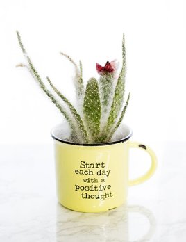 Natural Life Start Each Day Camp Mug