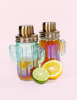 Slant Collections Cactus Shaker