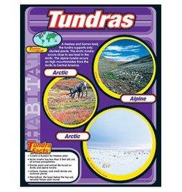 Trend Enterprises Chart 17x22   Tundras