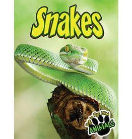 Teacher Created Resources Eye to Eye with Snakes Book