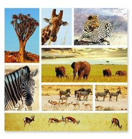 Melissa & Doug Safari Snapshots