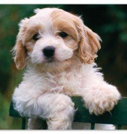 Melissa & Doug Precious Puppy