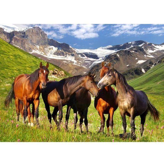 Melissa & Doug Mountain Horses puzzle 500 pc