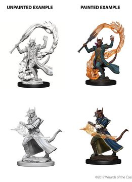 DND Unpainted Minis: Tiefling Male Sorcerer
