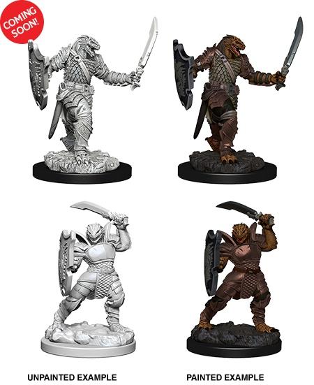 D&D Unpainted Minis: Dragonborn Paladin Female