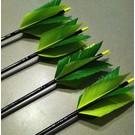 "Gateway Feathers GW Flu Flue Cut 5 1/4"" Feathers Ea"