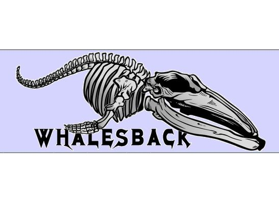 Whalesback