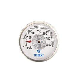 TRIDENT LPG GAUGE FOR 1230-1411 REG.  690-1400