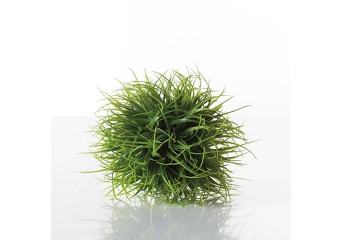 Grass Ball Small
