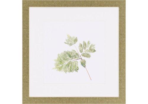Watercolor Leaf Study II