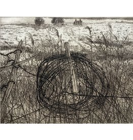 Simoens, Leo Coiled Fence