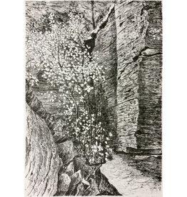 Simoens, Leo Limestone Cliffs