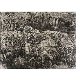 Jacobs, Bev Landscape 2