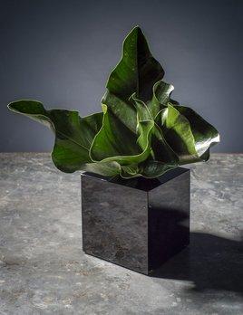 BECKER MINTY BECKER MINTY - Small Square Cube Vase - Dark Topaz - 12x12x12cm