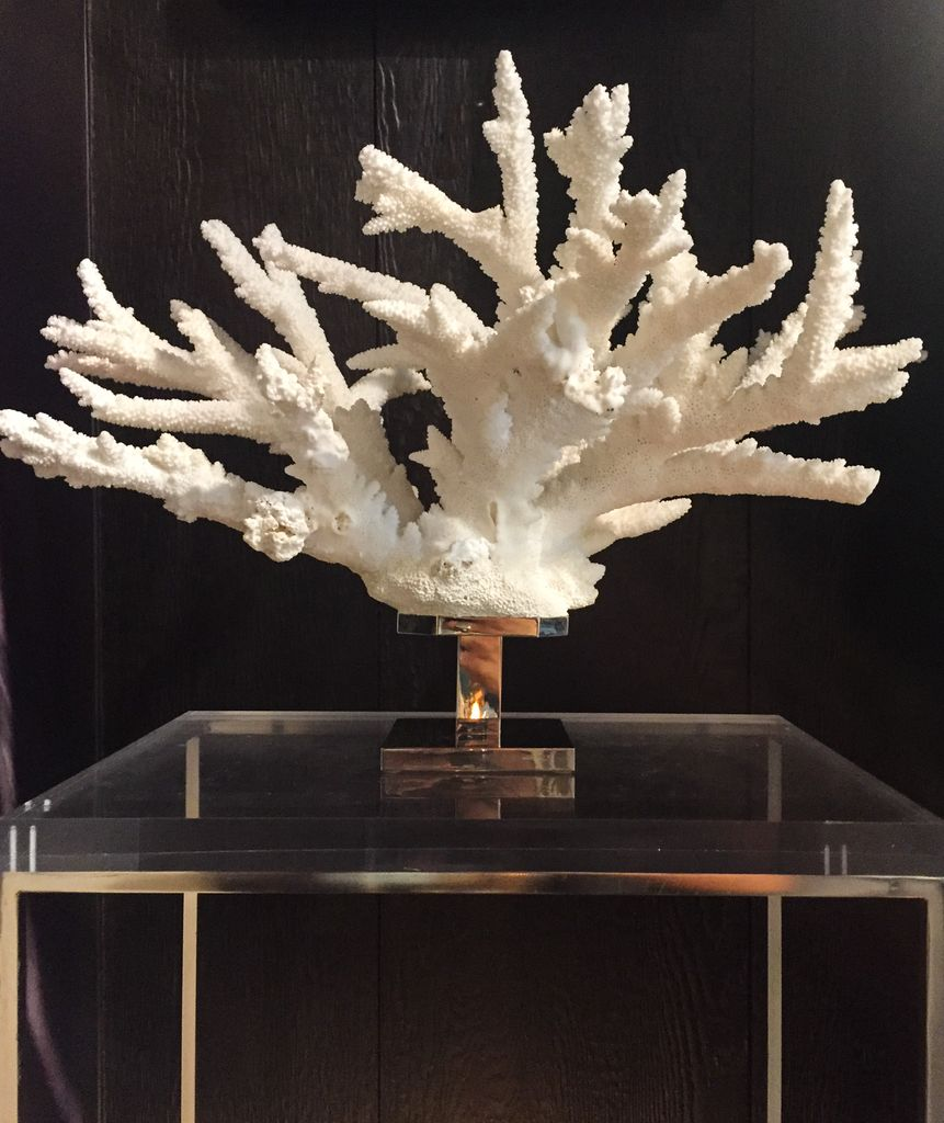 Branch Coral on Nickel-plated Brass Base - Made in Italy - H35x53cm